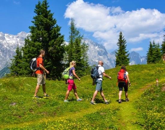 Для организма полезны прогулки на природе