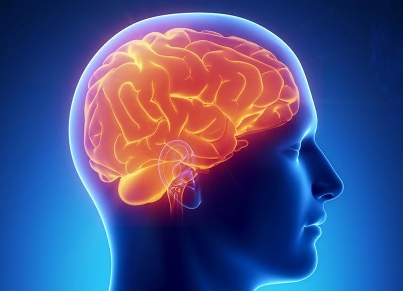 Подробное изображение отека головного мозга